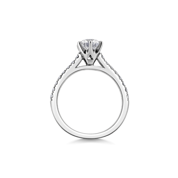 Dani Diamond Six Claw with Microset Shoulders Engagement Ring Side View